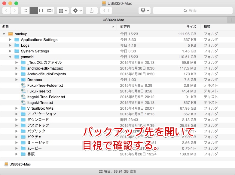 iBackup312