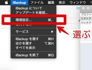 iBackupChap206